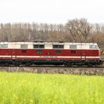 V 180 auf der Heidekrautbahn