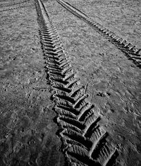 'v'-traces