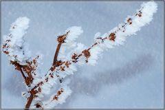 Väterchen Frost....