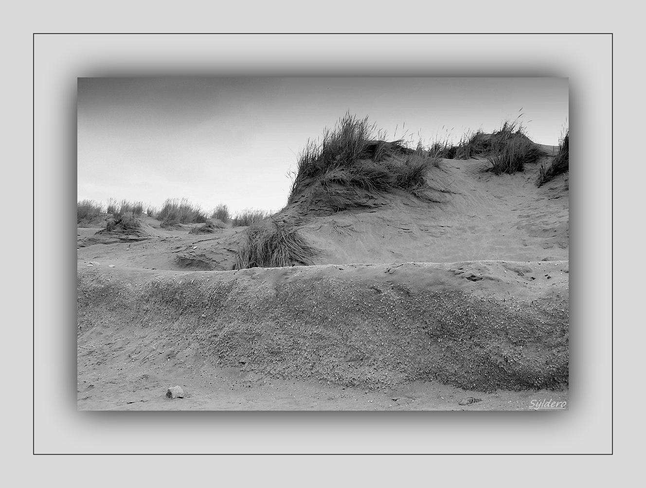 Vague de sable