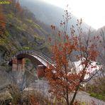 Val Borbera (AL) la Passerella
