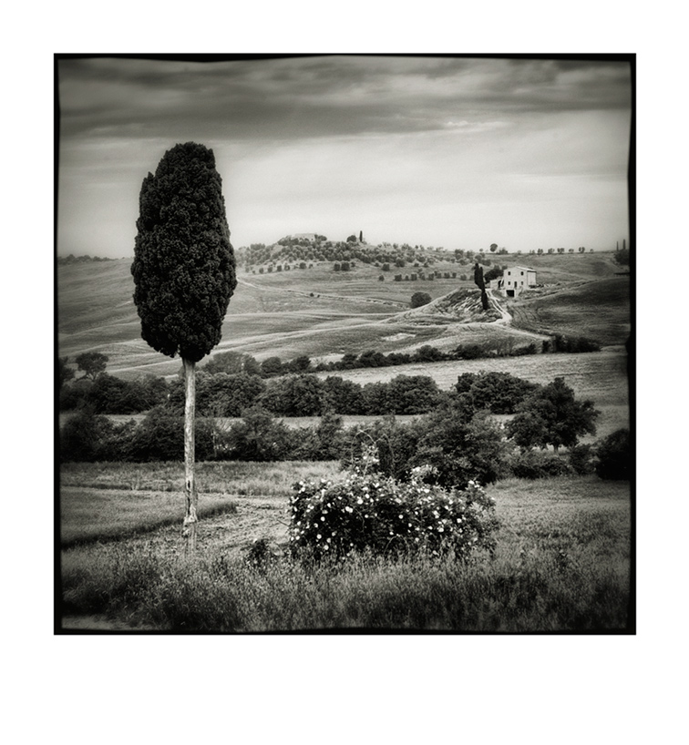 Val d'Orcia # 11