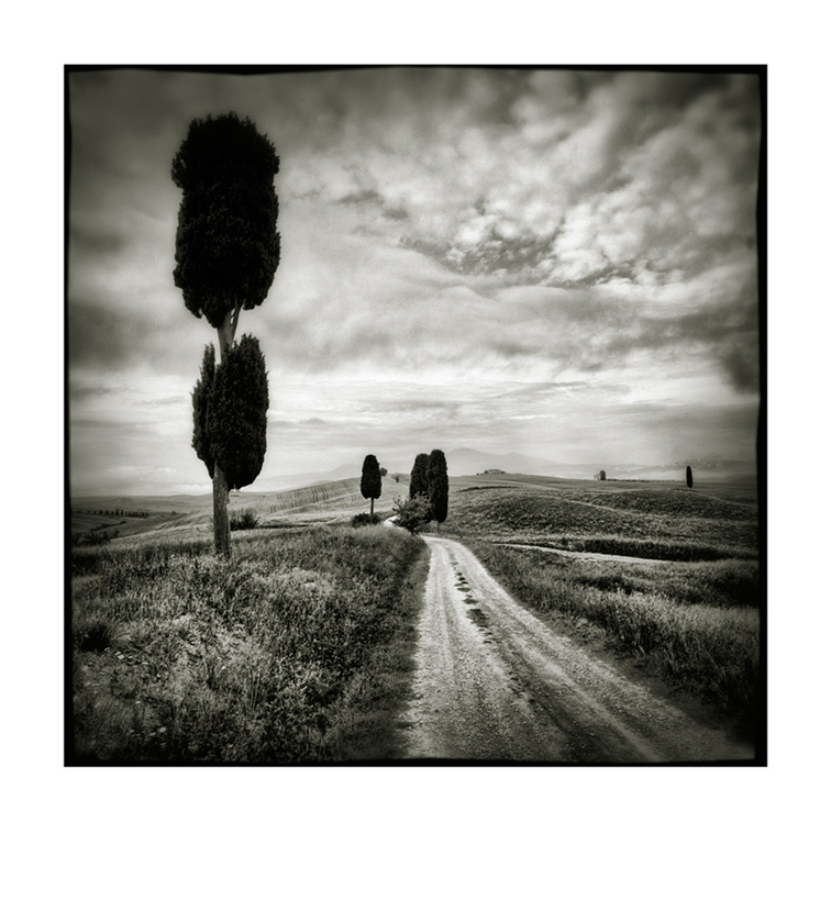 Val d'Orcia # 14