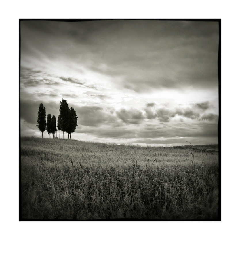 Val d'Orcia # 21