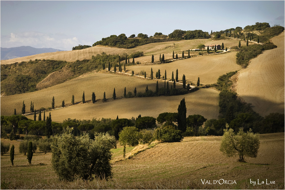 Val d'Orcia VIII