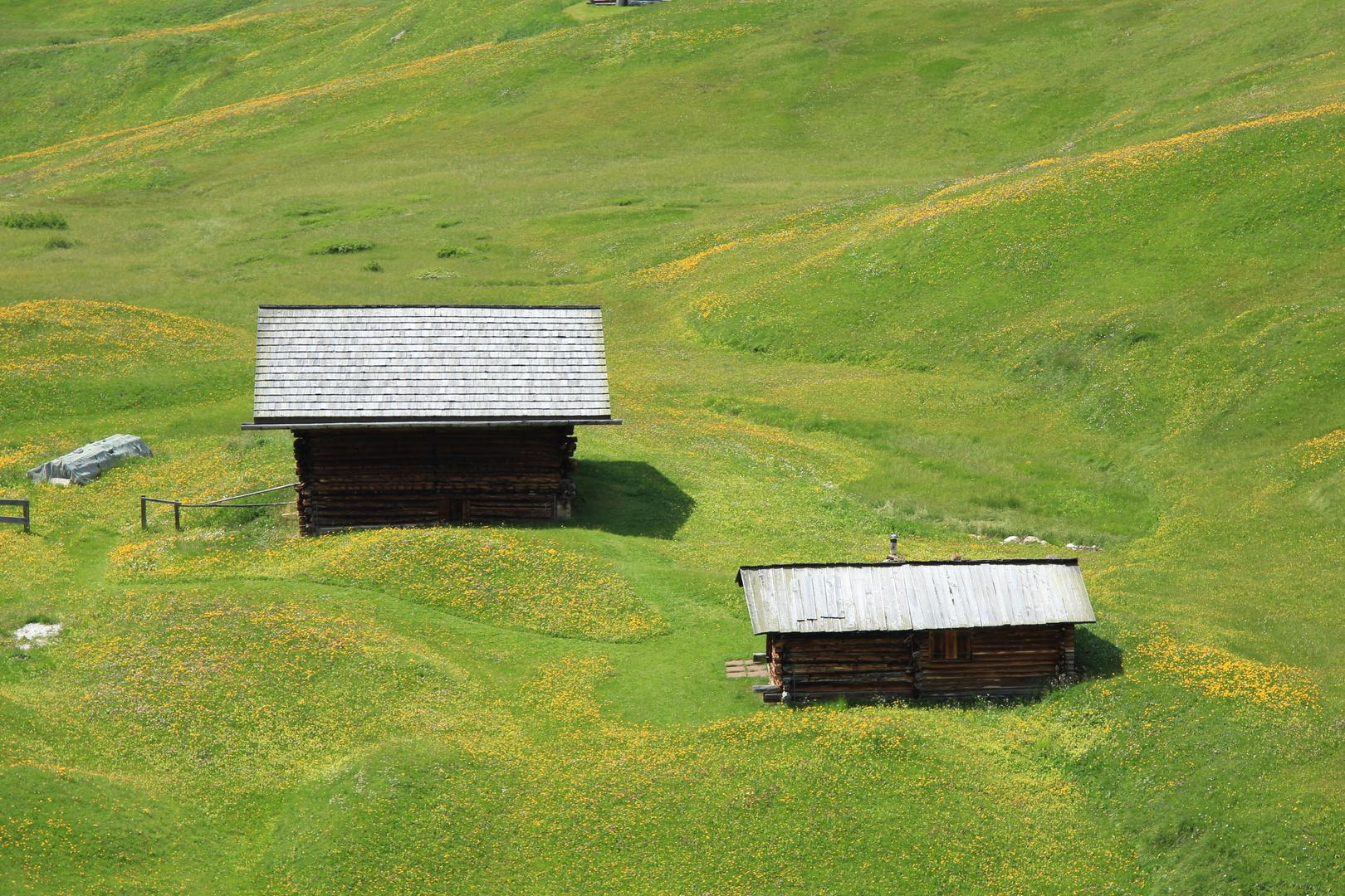 Val Gardena - Bergwiesen