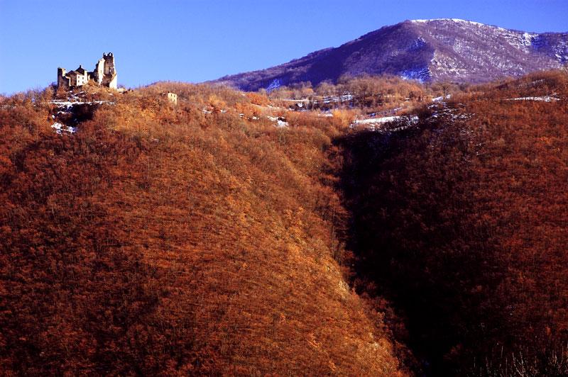 Val Perino