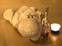 Valentinsteddy mit Flaschenpost