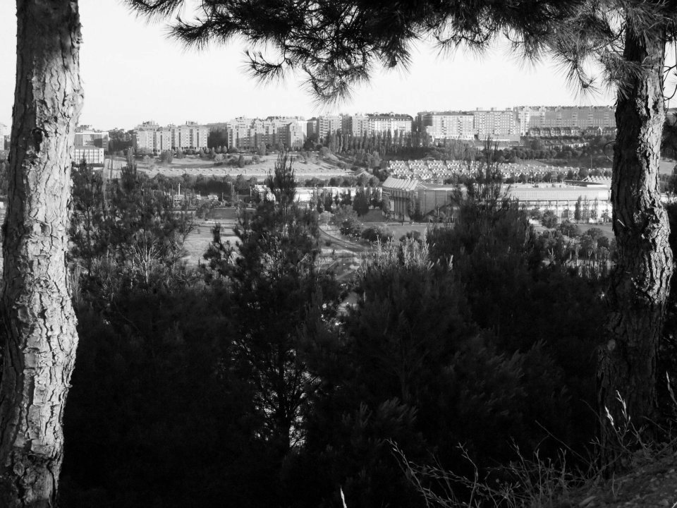 Valladolid seen from a park