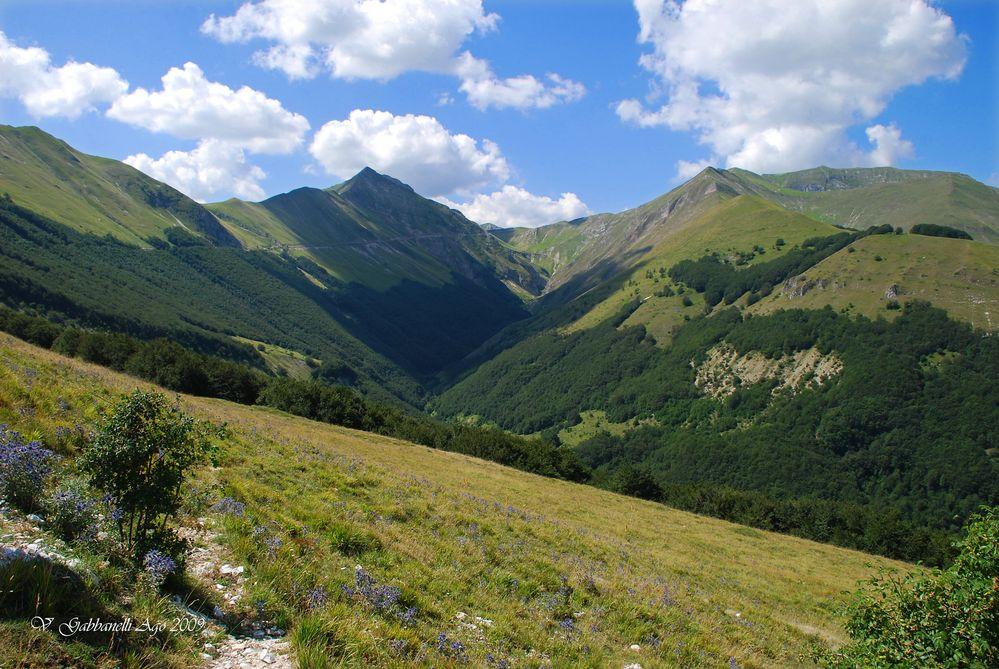 Valle e Passo del Farnio