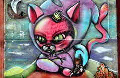 Valparaiso: Kitten