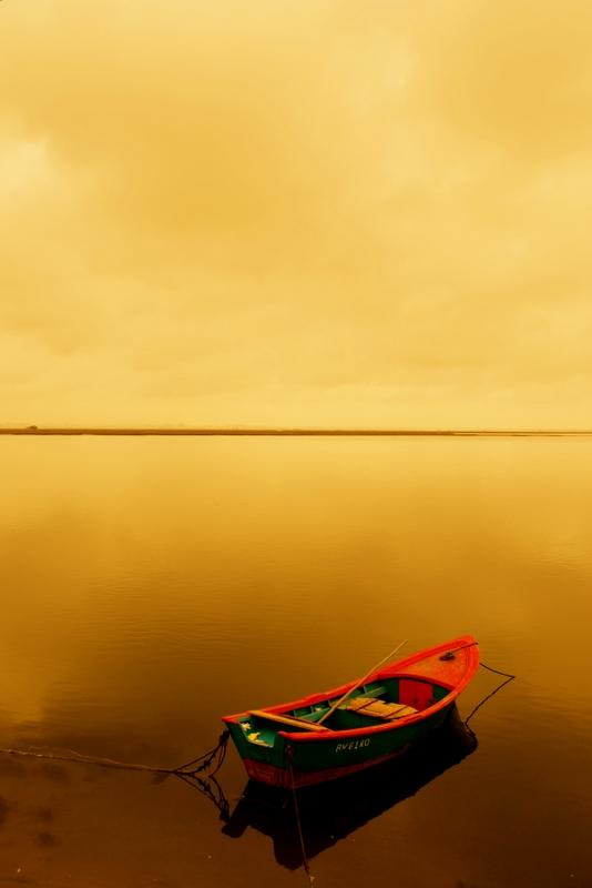 Van Gogh Boat