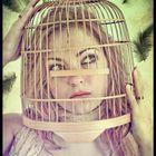 Vanessa hast eine Vögel