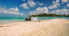 Vanille Insel Taha'a  - Tahiti  - Ozeanien