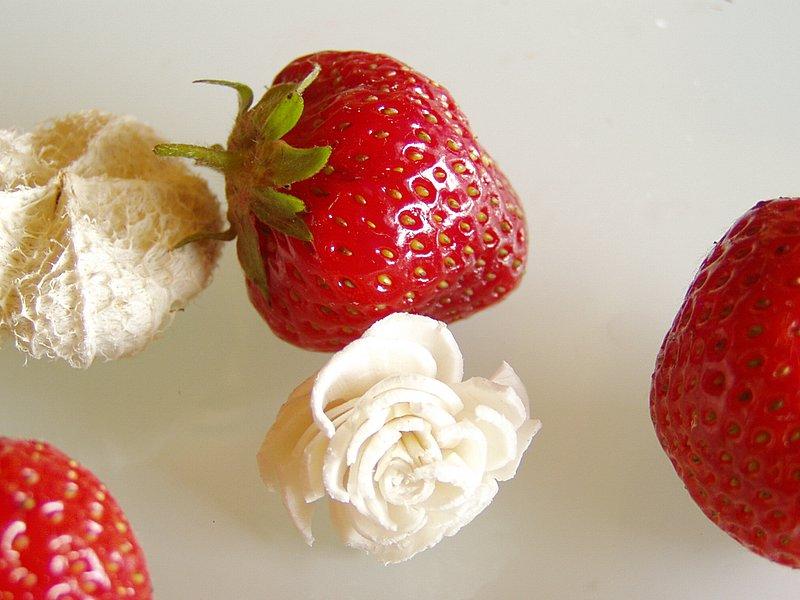 Vanille liebt Erdbeer