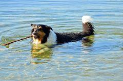Vanja beim morgentlichen Bad im See