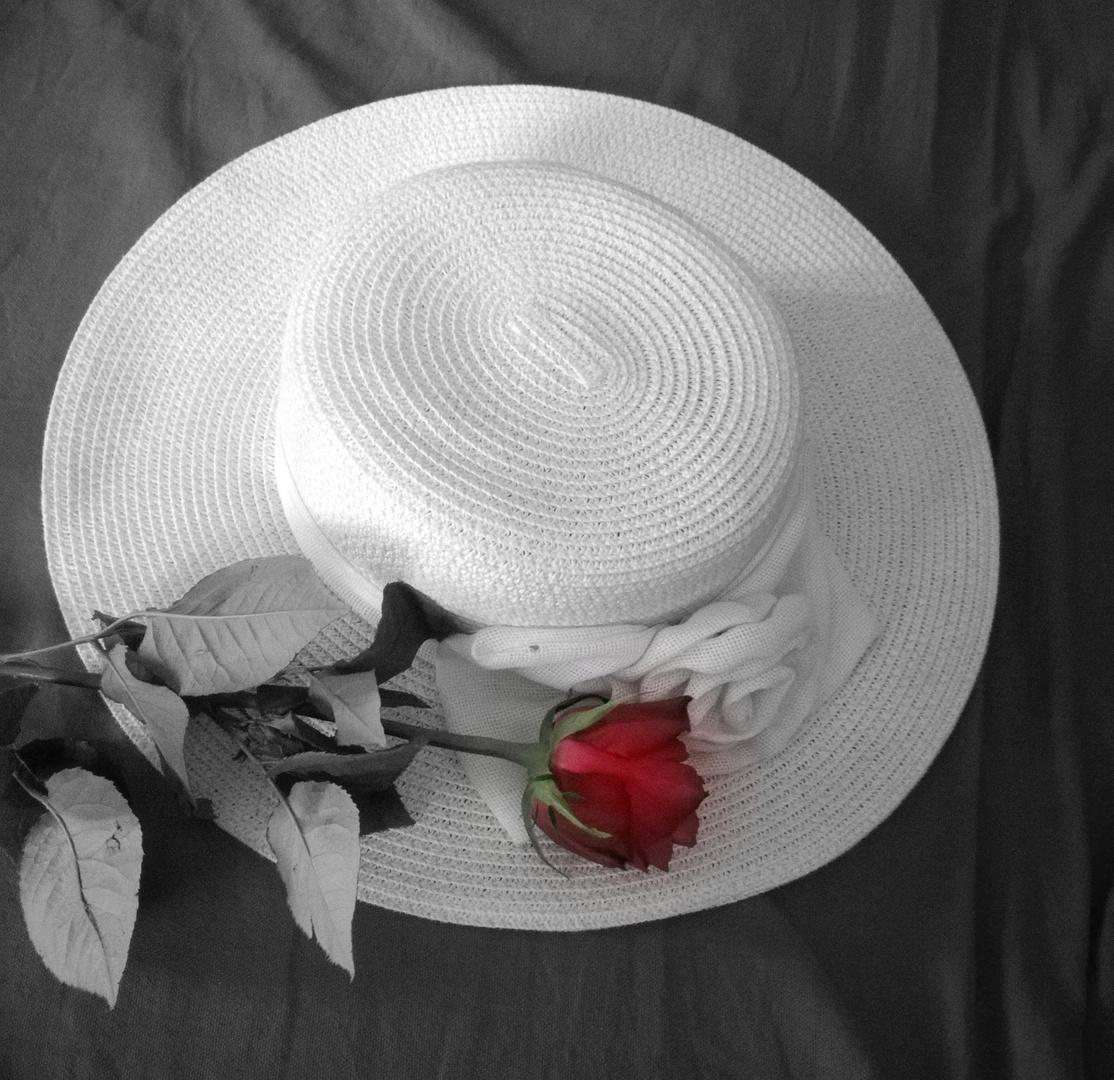 variation sur une rose ...3