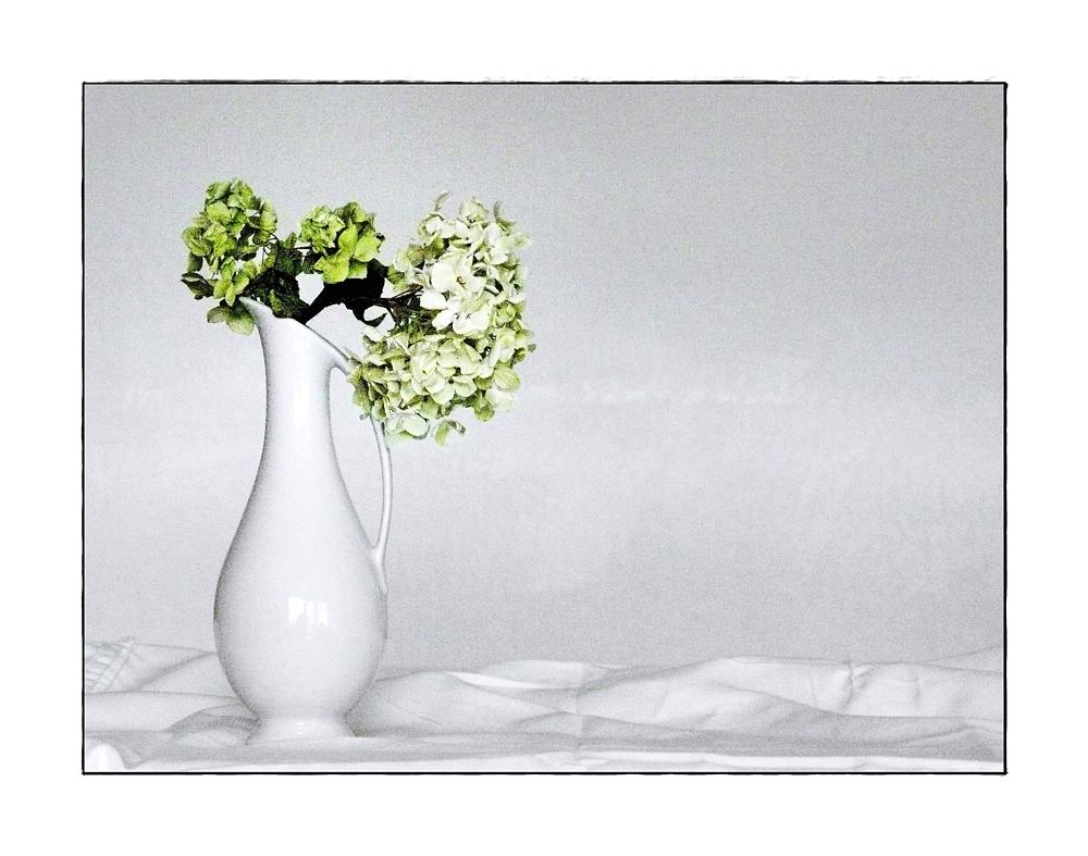 Vase mit Hortensienblüten