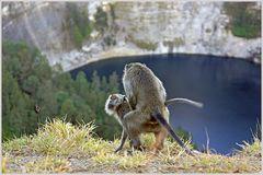 Vati bist Du es? Sex am Krater-Rand/ Flores/ Indonesien