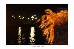 VCE 12 - impressione di Venezia