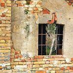 vecchi muri.