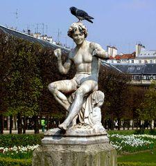 vecchia foto...piccione parigino ai giardini del Palais Royal