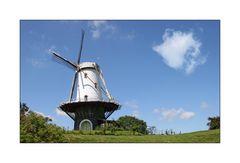 Veere - Zeeland *Die Windmühle am Deich*