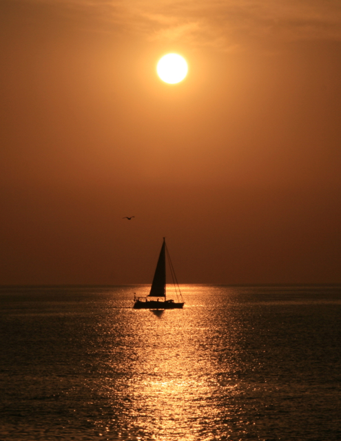 Velero solitario. Solo sailing