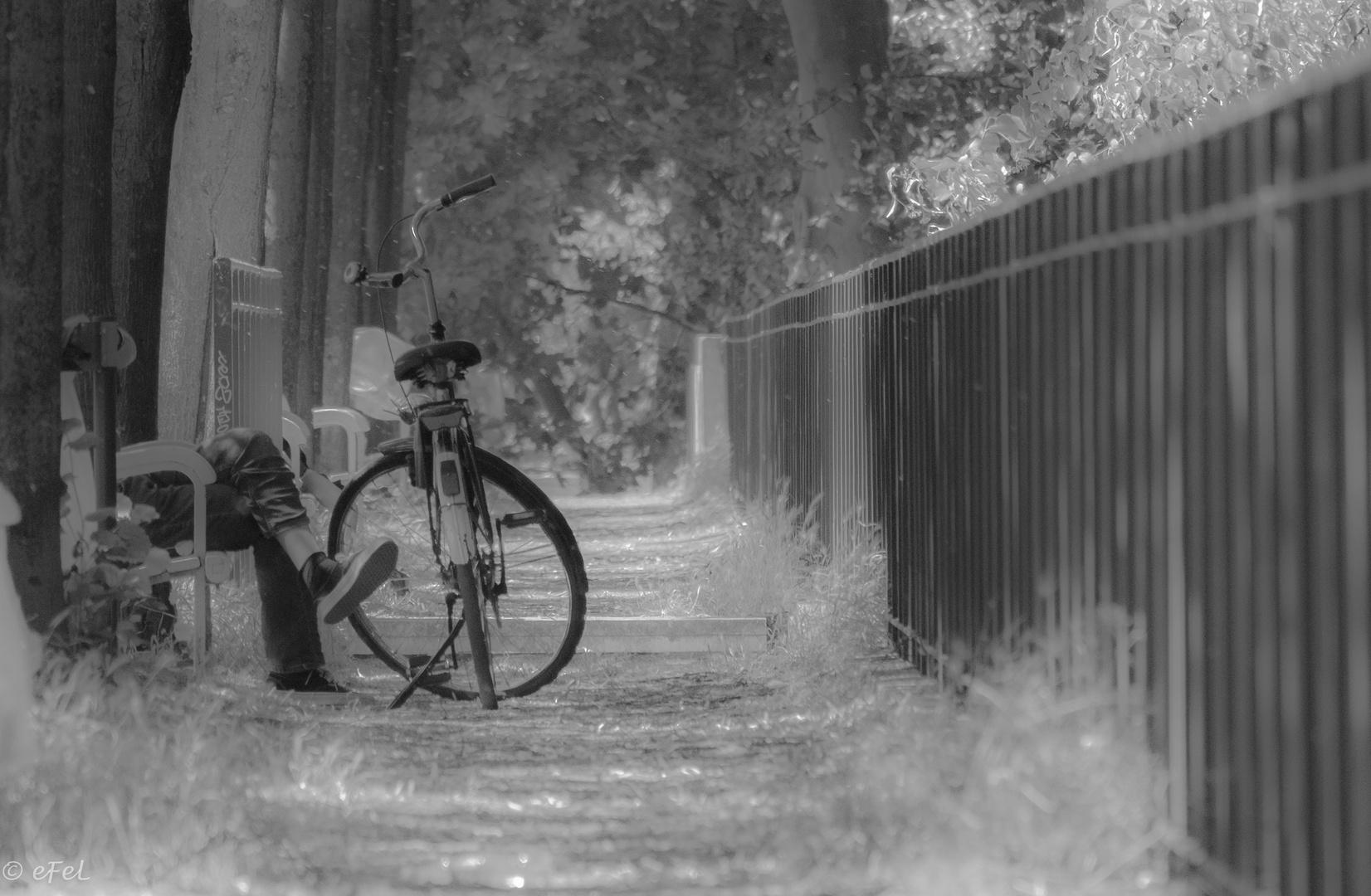 Vélo en noir et blanc