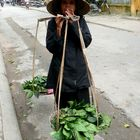 Venditrice di verdura Hoi an