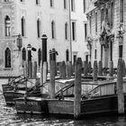 Venecia B&W 11