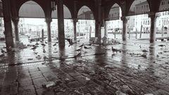 Venedig #7