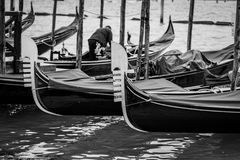 Venedig B/W