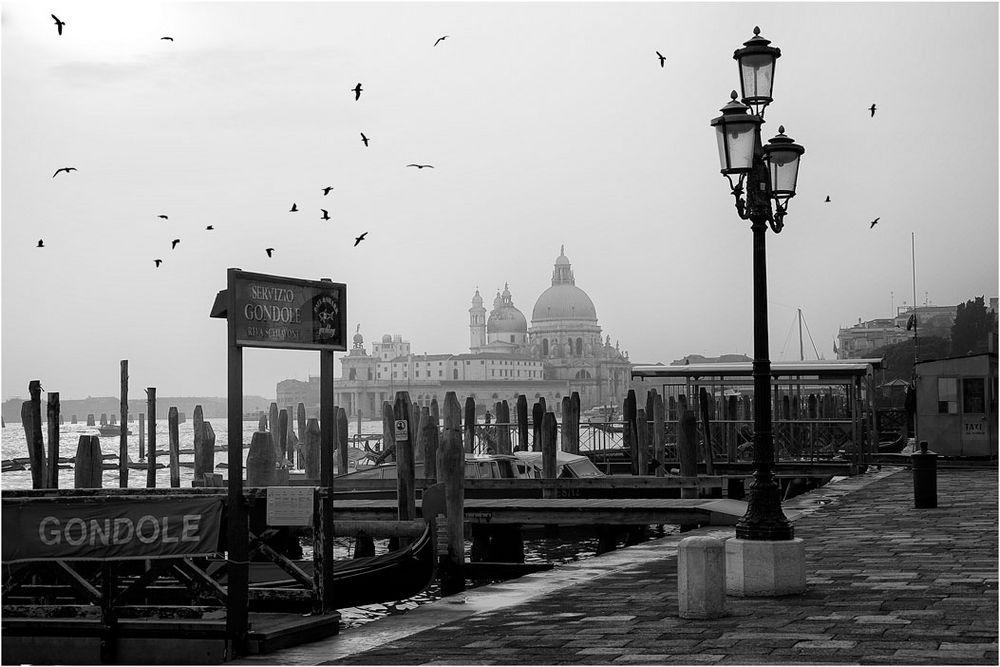 [ Venedig ]