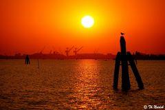 Venedig- Lagunenfahrt