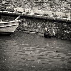 Venedigs mühsamer Kampf gegen den Verfall
