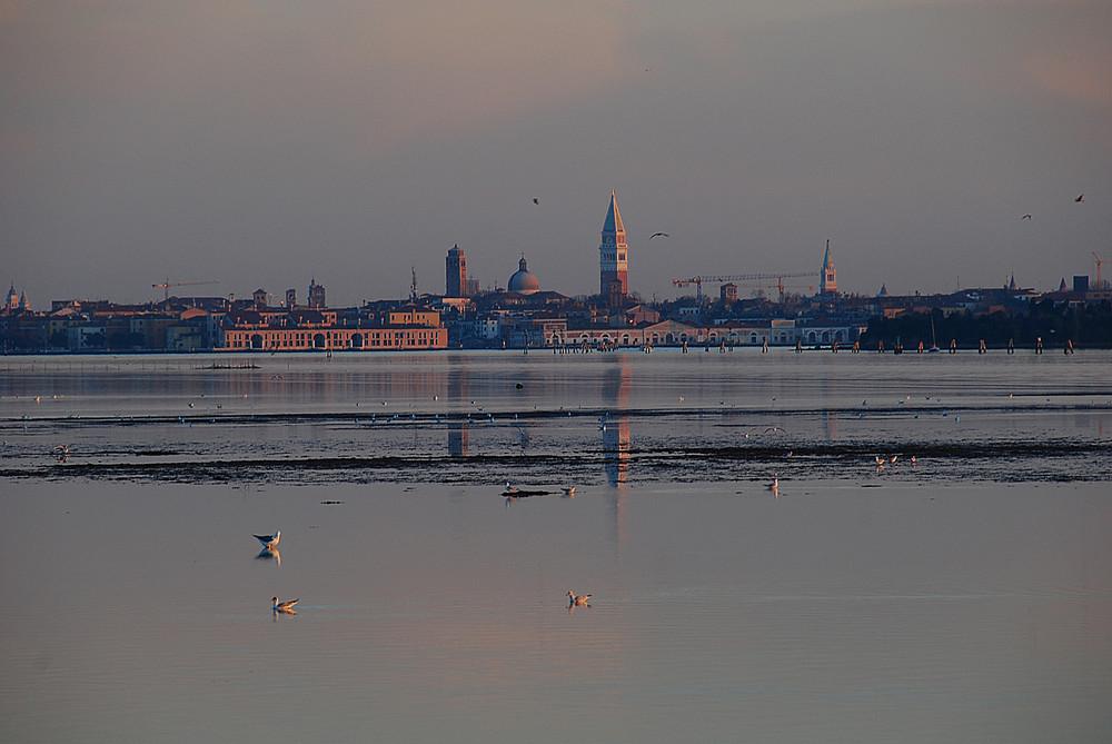 Venezia : Lagoon sunset