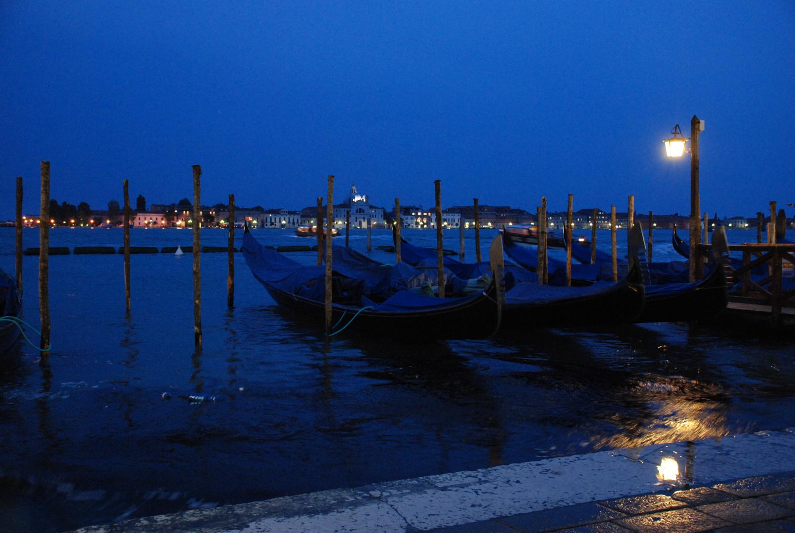 Venezia Notte Foto Immagini Paesaggi Mare Venezia Foto Su
