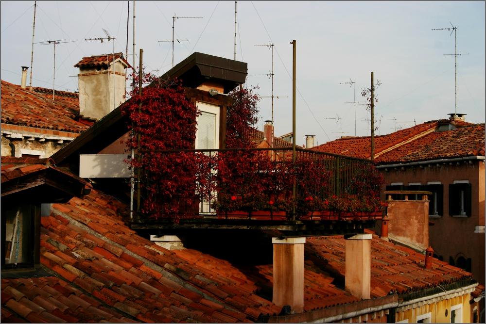 Venezia: Terrazza