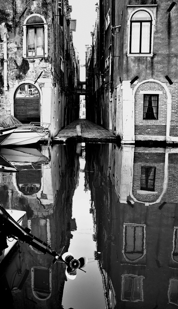 venice anders