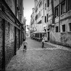 Venice street