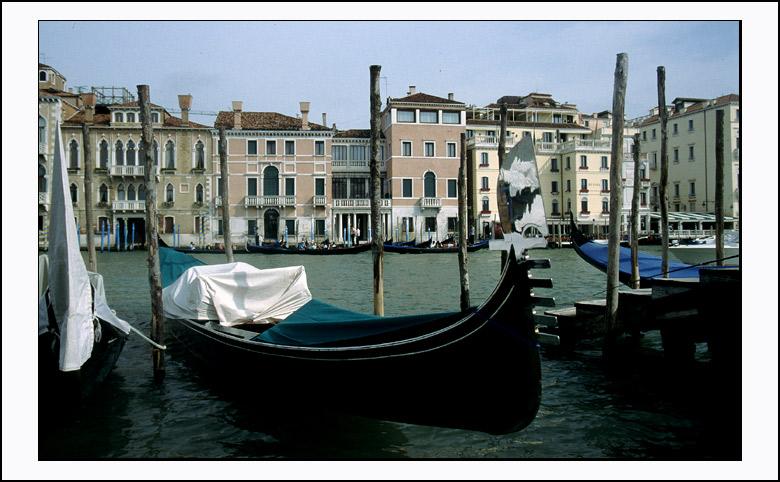 Venice - the gandolas of venice