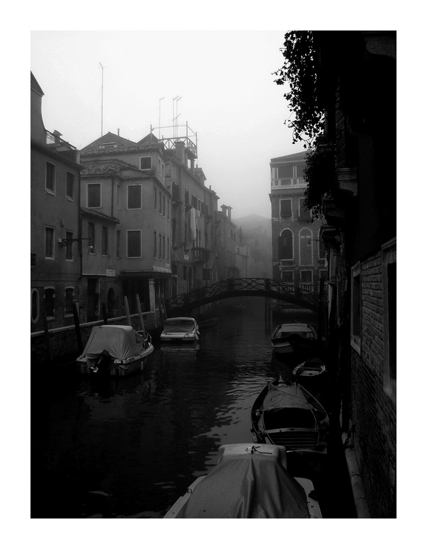 Venise black and white