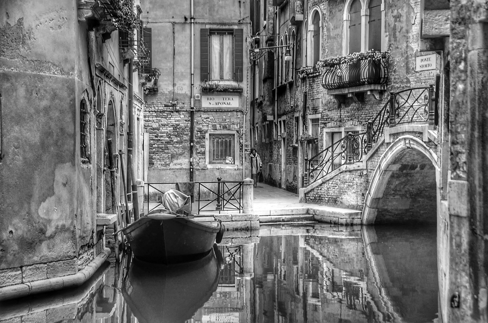 Venise pure