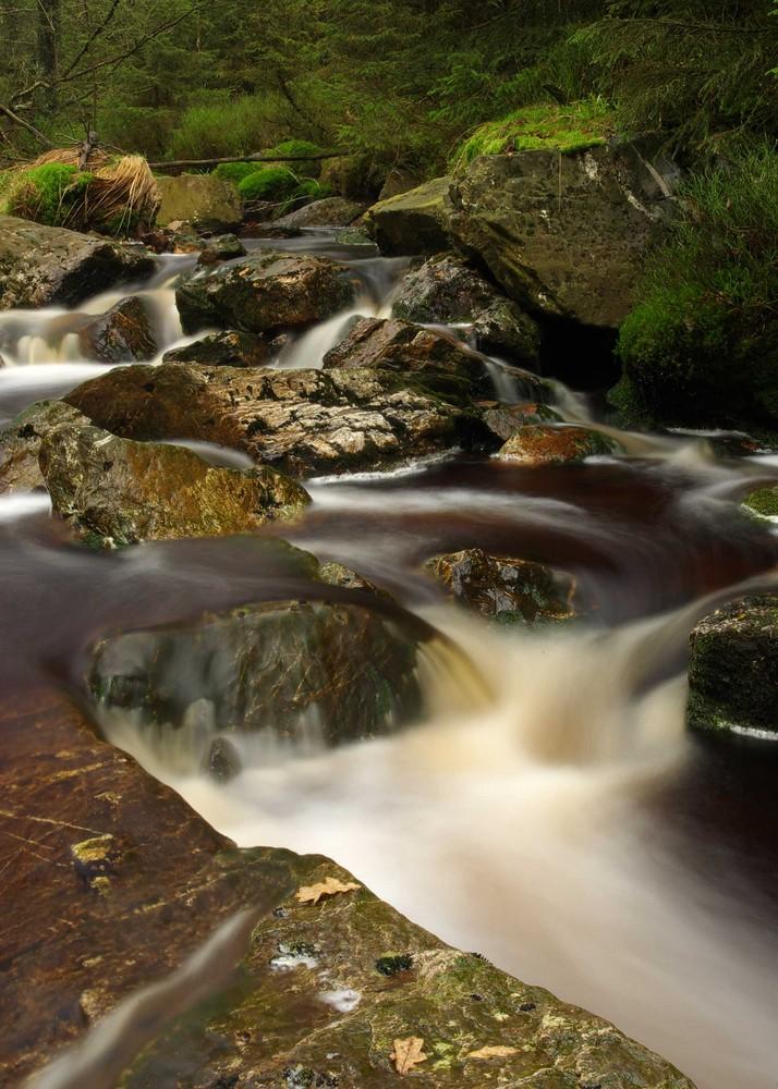 Vennwasser