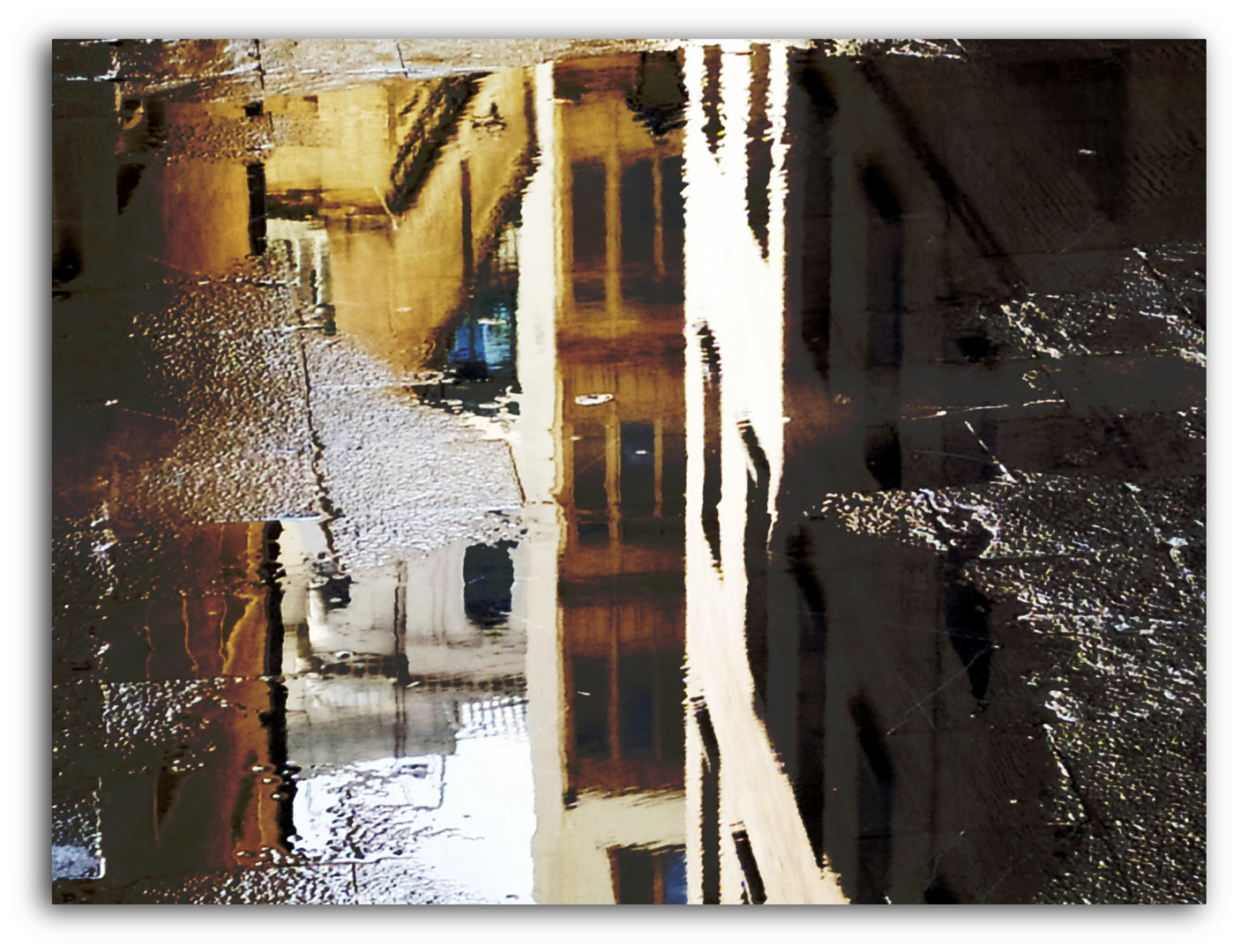``````````````ventanas en el agua,,,,,,,,del charco