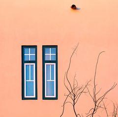 ventanas gemelas