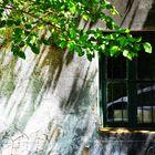 Ventanas y balcones. LXXI.