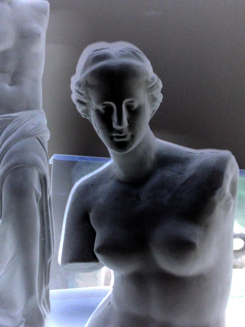 Venus en el Estudio II
