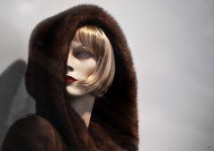 venus in furs